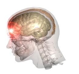 traumatic Brain Injury Attorneys in Bend, OR